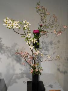 浅田 和春