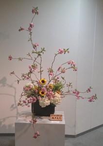 板井 爽花