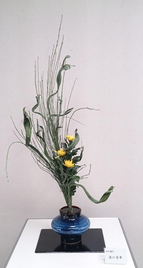 滝口香華 花材:石化えにしだ、菊