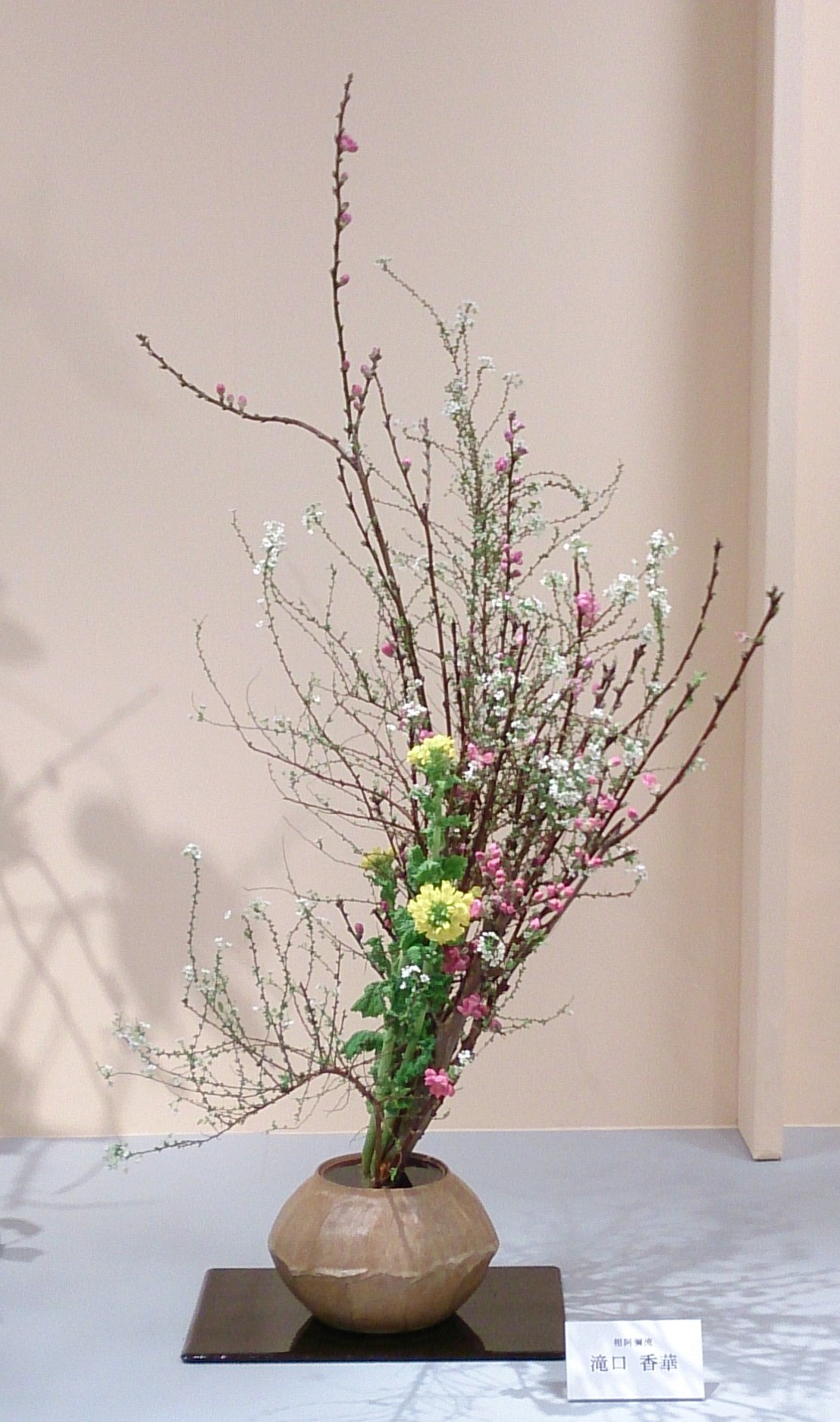 滝口 香華 (桃、雪柳、菜の花)