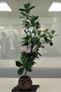 石川 南舟